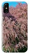 Crepey Myrtle Tree In Istanbul-turkey IPhone Case
