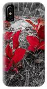 Crimson Foliage IPhone Case