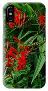 Crocosmia In Red IPhone Case
