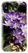 Crocus Amongst The Leaf Litter IPhone Case
