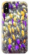 Crocus Field IPhone Case