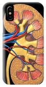 Cross Section Of Human Kidney On Black IPhone Case