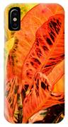 Croton's Many Colors IPhone Case