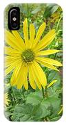 Cup Plant Blooms IPhone Case