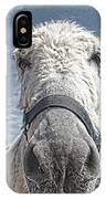 Curious Donkey IPhone Case
