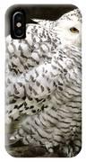 Curious Snowy Owl IPhone Case