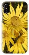 Cutleaf Daisy IPhone Case