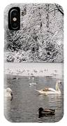 Cygnets In Winter IPhone Case