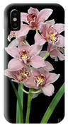 Cymbidium Lillian Stewart 'ste Sherrie'. IPhone Case
