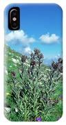 Cynoglossum Magellense IPhone Case
