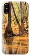 Cypress In The Swamp IPhone Case