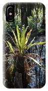 Cypress Knees And Ferns IPhone Case