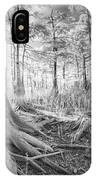 Cypress Roots In Big Cypress IPhone Case