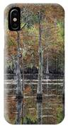 Cypress Tree Fall Reflections IPhone Case