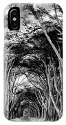Cypress Tree Tunnel Point Reyes IPhone Case
