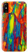 D Mas Gras IPhone Case