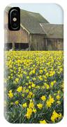Daffodils And Barn IPhone Case