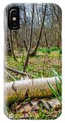 Daffodils And Birch IPhone Case