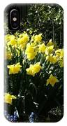 Daffodils And Bluebells IPhone Case