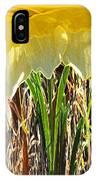 Daffy One IPhone Case