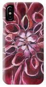 Dahlia - Closeup 2 IPhone Case