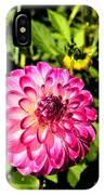 Dahlia 9 IPhone Case