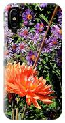 Dahlias And Asters IPhone Case
