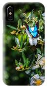 Daintree Monarch Butterfly IPhone Case
