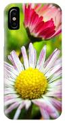 Daisies In Januray IPhone Case