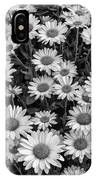 Daisy Cluster Vermont Flowers In Black And White IPhone Case