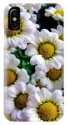 Daisy Daisy IPhone Case