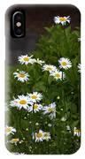 Daisy Splendor IPhone Case