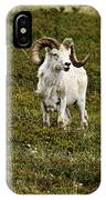 Dall Rams On Alert IPhone Case