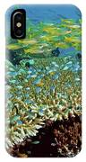 Damselfish (pomacentridae IPhone Case