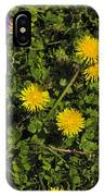 Dandelion Convention IPhone Case