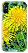 Dandelion Flowers Are Beautiful. IPhone Case