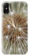 Dandelion Square IPhone Case