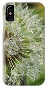 Dandelion With Water Drops IPhone Case