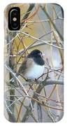 Dark- Eyed Junco IPhone Case