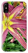 Dark Star Daylilies IPhone Case