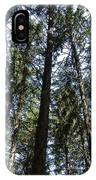 Dark Trees IPhone Case