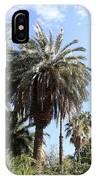 Date Tree At The Arboretum IPhone Case