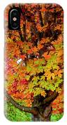 Day Glo Autumn IPhone Case