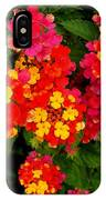 Day Glo Summer IPhone Case