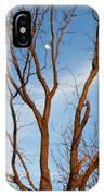 Daylight Moon IPhone Case