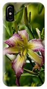 Daylily Picture 494 IPhone Case