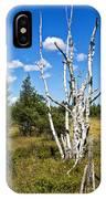 Dead Birch Trees IPhone Case