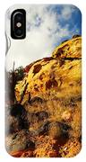 Dead Tree Against The Blue Sky IPhone Case