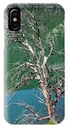 Dead Tree At Green River Lakes -wyoming IPhone Case
