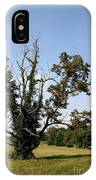 Dead Tree With Ivy IPhone Case